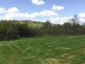 Gestion écologique des espaces verts - Azergo